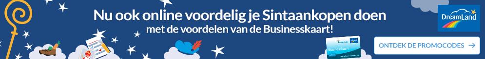 Nu ook online voordelig je Sintaankopen doen met de voordelen van de Businesskaart!
