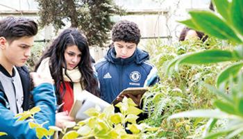 Jongeren vullen werkblad in in Plantentuin Meise