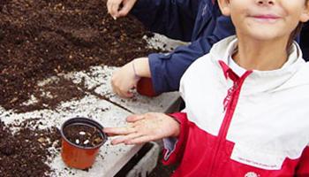 kinderen planten zaadjes