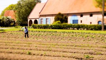 landbouw veld voor boerderij