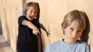 jongen pest andere jongen