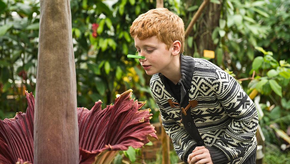 Jongen ruikt aan plant met wasknijper op zijn neus