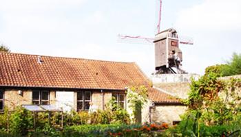 buitenkant museum met molen