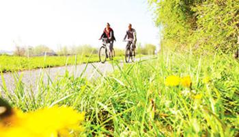 fietsers in natuur