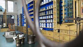 Potjes met kruiden in Apotheekmuseum Maaseik