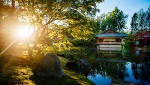 Zon schijnt door de bomen, zicht op vijver met typisch Japans huis (Hasselt)