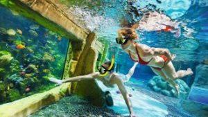 onderwaterzwemmers in aquarium
