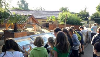 Groep kinderen kijken op panelen met info in het dierenpark