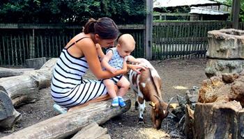 Mama met kind bij geitje in dierenpark De Zonnegloed