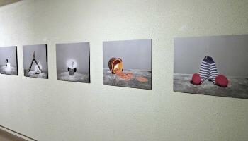 Mu.ZEE Oostende Wand met schilderijen