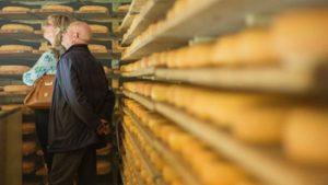 Rekken met kaas die ligt te rijpen