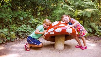 Efteling Kinderen bij muziekpaddenstoel