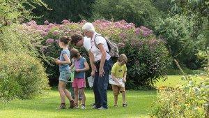 Lerarenkaart zomer tips: op zoektocht in het arboretum van Kalmthout