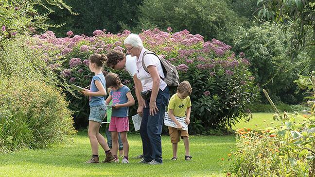 gezin op stap in het arboretum van Kalmthout