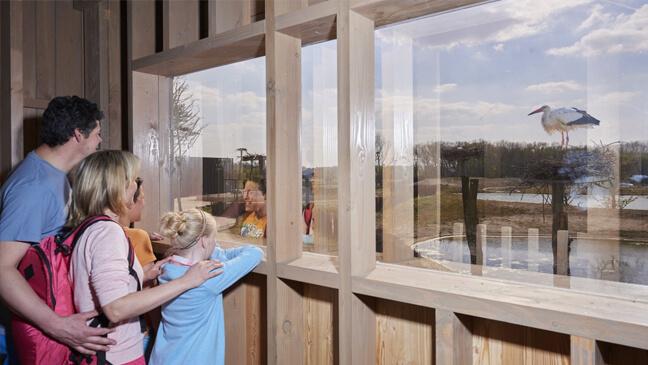 gezin kijkt door raam naar ooievaar