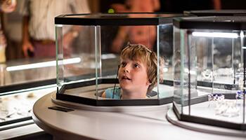 Jongen in het diamantmuseum