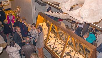 Bezoekers in het MuseOs