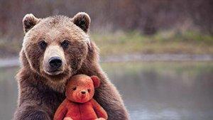 bruine beer met teddybeer
