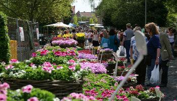 tuinliefhebbers bezoeken de plantenbeurs