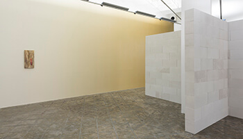 beeld uit de expo 'Pieter Vermeersch'