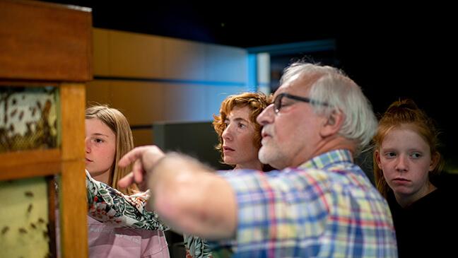 Gids Ludo in het bijenteeltmuseum met jongeren van het tweede jaar secundair