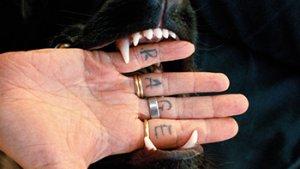 Vingers waarop RAGE geschreven staat in muil van hond.