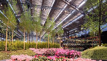 bloemenperk in Floraliënhal