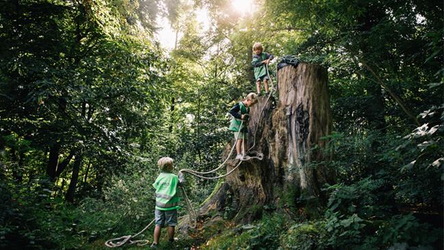 Ervaringsgericht leren in basisschool Kosmos: kleuters spelen met een touw in een boom