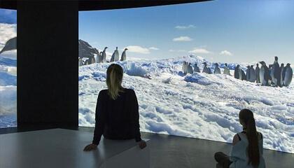 kinderen kijken naar film over Antarctica