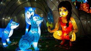 voorstelling uit Jungle Book Light Festival