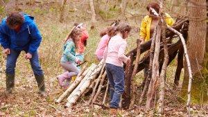 Een klas in het bos