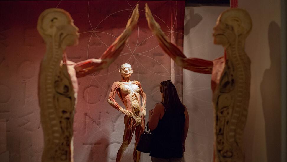 Vrouw loopt rond in de expo 'real bodies'