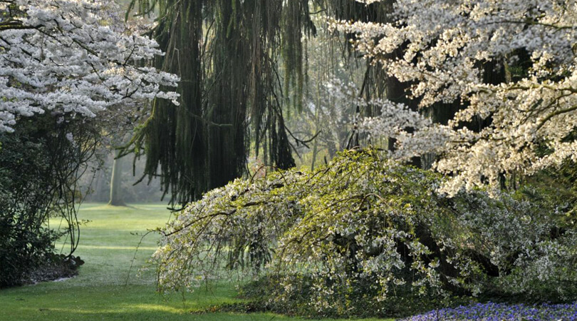 Bomentuin Arboretum Kalmthout