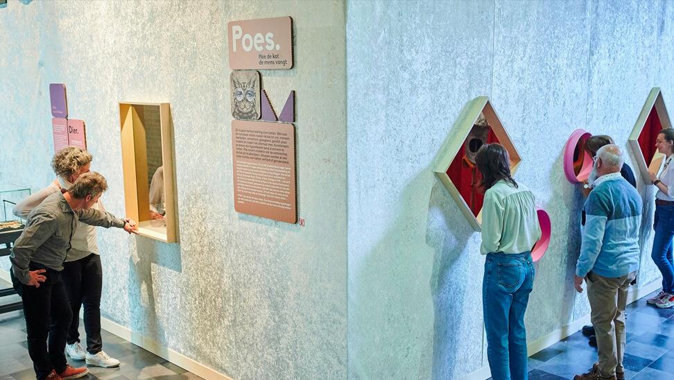 Bezoekers aan de expo 'Poes'a